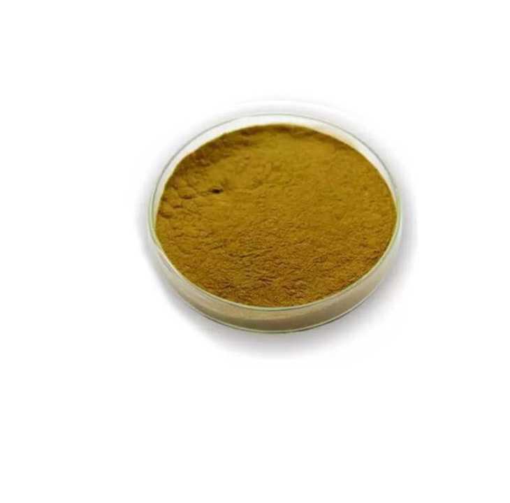 Olive Leaf Extract 1